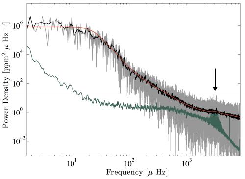La potenza della variazione di luminosità in funzione della frequenza mostra la presenza di un chiaro aumento del segnale nella regione intorno ai 3 mHz (indicata dalla freccia), dovuta alle oscillazioni solari. Il segnale oscillatorio è molto contrastato per i dati VIRGO del Sole (in verde) ma solo appena visibile per i dati di Kepler (K2) provenienti dala luce riflessa da Nettuno (in grigio) a causa del ben più elevato livello di rumore del segnale. I risultati del fit sono mostrati dalla linea arancione, sovrapposta ad una curva in nero che mostra l'andamento del livello di rumore nei dati K2. Crediti: P. Gaulme