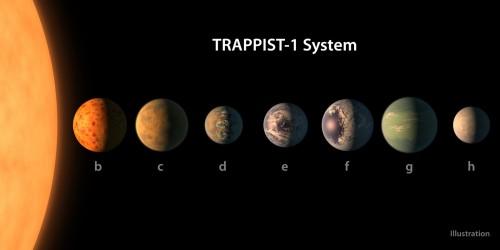 Il sistema di TRAPPIST-1. Credits: NASA/R. Hurt/T. Pyle