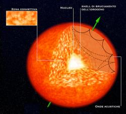 Una gigante rossa in sezione, ci mostra che al suo interno si propagano onde acustiche, le quali osservate dall'esterno ci danno informazioni sull'inclinazione dell'asse di rotazione stellare.