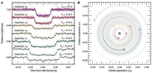 """Fig.4: Curve di luce rappresentative dei transiti dei 7 pianeti (a sinista) e rappresentazione delle loro orbite (escluso Trappist-1h); l'area in grigio e quella delimitata dai due cerchi tratteggiati rappresentano la """"zona abitabile"""" (presenza abbondante di acqua liquida in superficie) secondo due diversi modelli. - Crediti: Gillon et al. - ESO"""