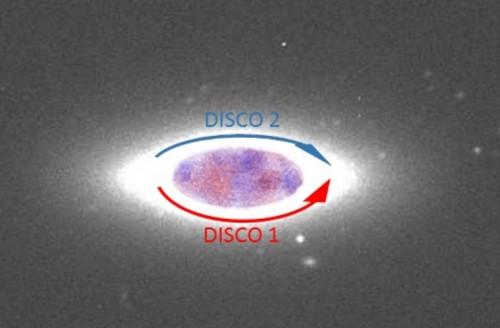 Rappresentazione schematica dei due dischi di stelle controrotanti in Ngc 1366. Crediti: Lorenzo Morelli / Univ. Padova