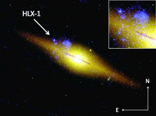 Immagine della galassia Eso 243-49 ottenuta utilizzando dati del telescopio spaziale Hubble. Lo zoom nel riquadro e la freccia mostrano la posizione della sorgente X HLX-1, che è uno dei principali candidati buco nero di massa intermedia. Fonte: Mnras 433, 849, M. Mapelli et al. (2013)