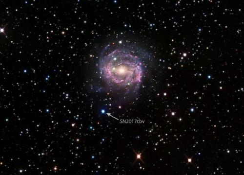 SN 2017cbv si trova nelle periferie della galassia a spirale NGC 5643, a 55 milioni di anni luce di distanza. Credit: B.J. Fulton/Caltech