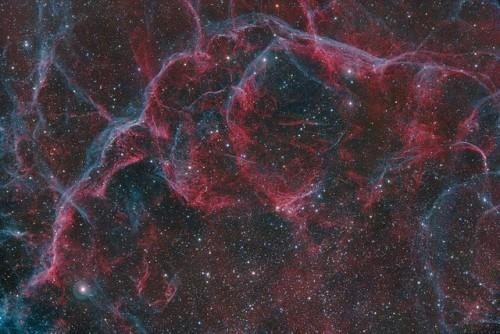 Sezione nord della Nebulosa delle Vele (©Harel Boren)