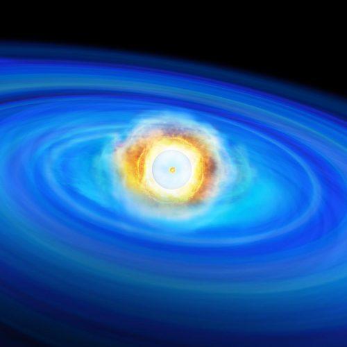 L'esplosione nucleare dello strato di elio superficiale ha innescato un'onda d'urto verso l'interno provocando la fusione nucleare di carbonio al centro. Crediti: Institute of Astronomy, University of Tokyo