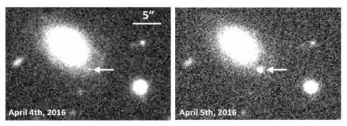 L'immagine è stata scattata con la Hyper Suprime-Cam montata sul telescopio Subaru. Crediti: University of Tokyo / NAOJ