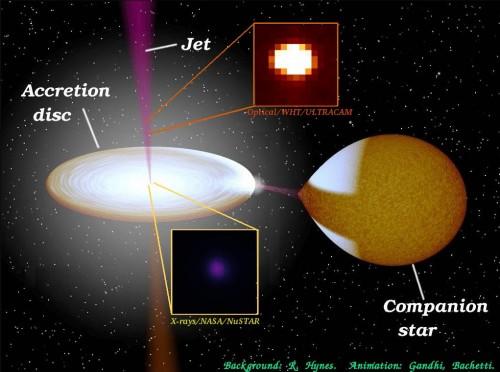 In questo schema, le strutture in gioco osservate (buco nero, disco d'accrescimento, getto e stella compagna) e il dettaglio delle parti studiate da Nustar e dallo strumento UltraCam del William Herscel Telescope.
