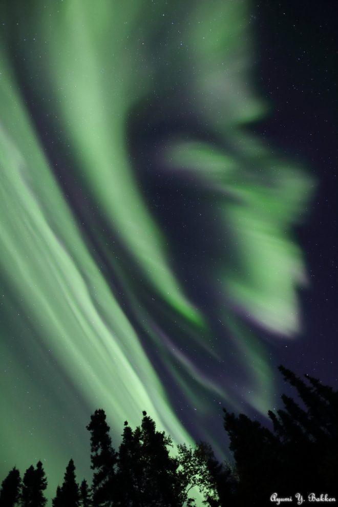 Aurora ripresa da Ayumi Bakken in Alaska