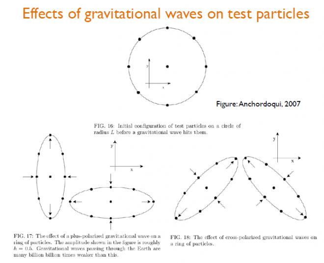 Esempio dell'effetto delle onde gravitazionali su particelle test. Fonte: UniPd